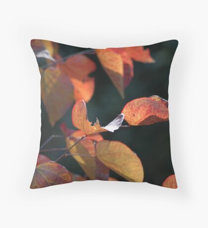 Toolangi Forest Pansy 1 Throw Pillow