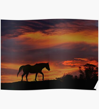 Sunset Colors with Arabian Silhouette Poster
