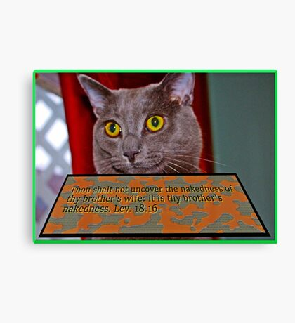 Cat with bible verse text 3 Canvas Print