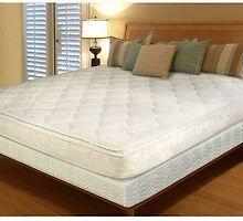 Online Find Spring Mattresses in India by S P  Singh