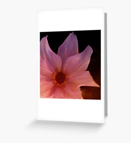Tree dahlia Greeting Card