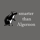 Smarter Than Algernon by 45thAveArtCo
