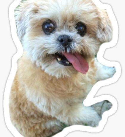 marnie Sticker
