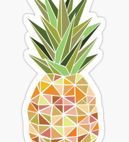 Geometric Multicoloured Pineapple Sticker