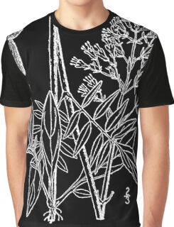 Britton And Brown Illustrated flora of the northern states and Canada 1566 Valeriana uliginosa Graphic T-Shirt