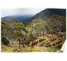 High Country Gums Poster