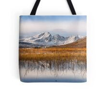 Blaven, Reeds and Snow. Isle of Skye. Scotland. Tote Bag