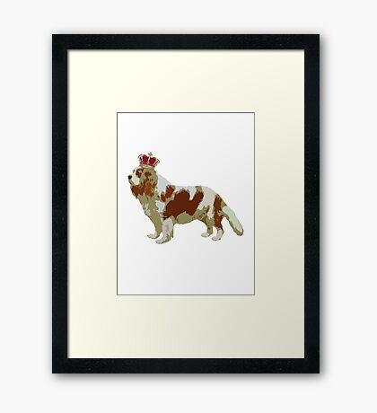 Cavalier King Charles Dog Framed Print