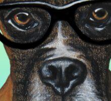 Hipster Boxer Dog Sticker