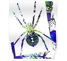 Arachnophilia-Neon Green/Blue Poster