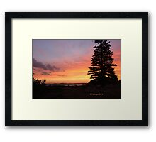 How appropriate - an orange touch to the evening's sky. Framed Print