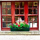 Gift Shop Window - Castle Coole, Fermanagh, Northern Ireland by Shulie1