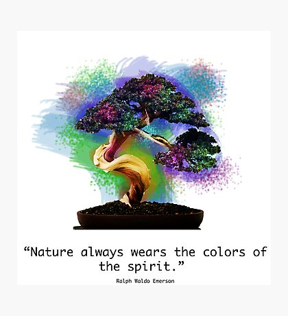 Nature Always Wears the Colors of the Spirit Photographic Print