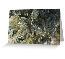 Mother Nature's Christmas Decorations - Pine Branches Greeting Card