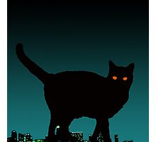 Black Cat on the Roof Photographic Print
