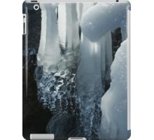 Elegant Christmas Ornaments From Mother Nature iPad Case/Skin