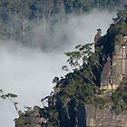 Blue Mtns National Park by PhotosByG
