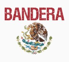 Bandera Surname Mexican Kids Clothes