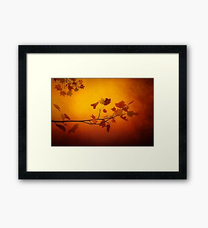 All precious things Framed Print