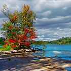 Fall colours along the river by Yukondick