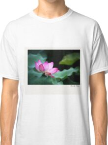 Water Lily by Winnie Classic T-Shirt