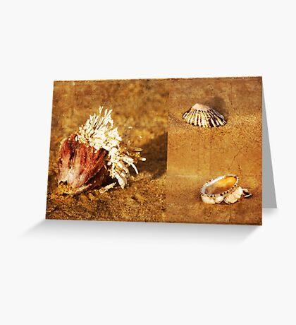 Natures Sculptures Greeting Card