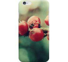 Red Winter Berries iPhone Case/Skin