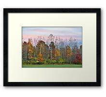 Autumn Wood at Sunset Framed Print
