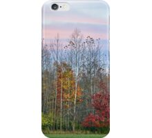 Autumn Wood at Sunset iPhone Case/Skin