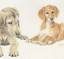 Saluki Puppies by BarbBarcikKeith