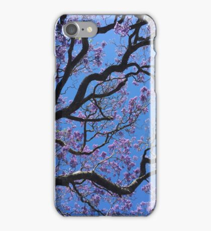 Sydney in Spring, jacarandas iPhone Case/Skin