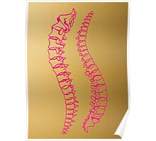 Pink Vertebrae on Gold Poster
