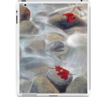 River Rocks iPad Case/Skin