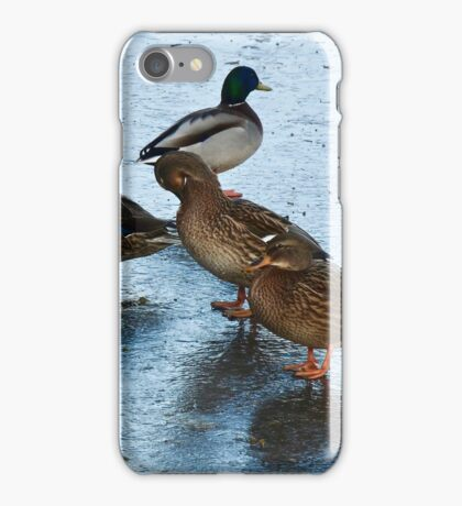 ICE COLD for THE DUCKS iPhone Case/Skin