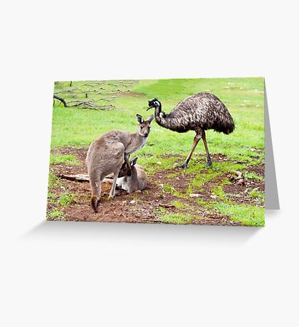Emu Who Thought He Was A Kangaroo Greeting Card