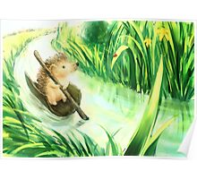 Hedgehog on a journey Poster