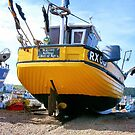 Deal fishing boat RX60  by Woodie