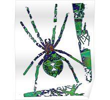 Arachnophilia-Green Poster