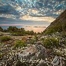 Great Glennie Island from Mt Oberon by Travis Easton