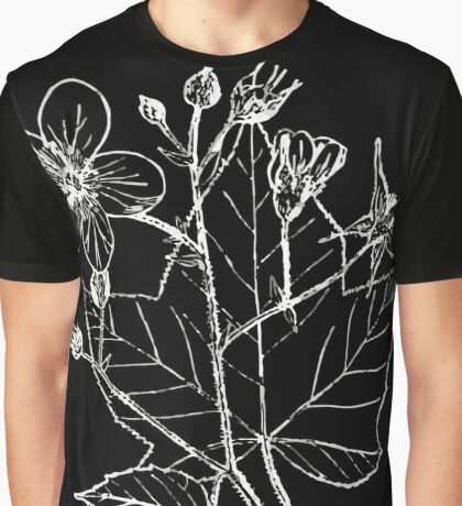 Britton And Brown Illustrated flora of the northern states and Canada 1260 Rubus odoratus BB 1913 Graphic T-Shirt