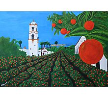 Parade of Oranges Photographic Print