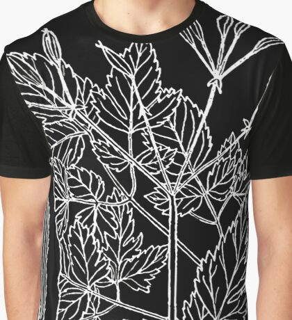 Britton And Brown Illustrated flora of the northern states and Canada 1041 Osmorhiza longistylis BB 1913 Graphic T-Shirt
