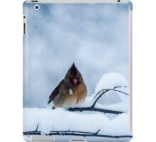Winter Blues iPad Case/Skin