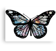 Butterfly Collections Canvas Print