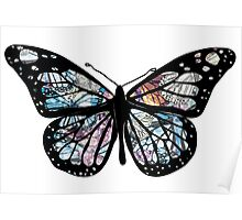 Butterfly Collections Poster