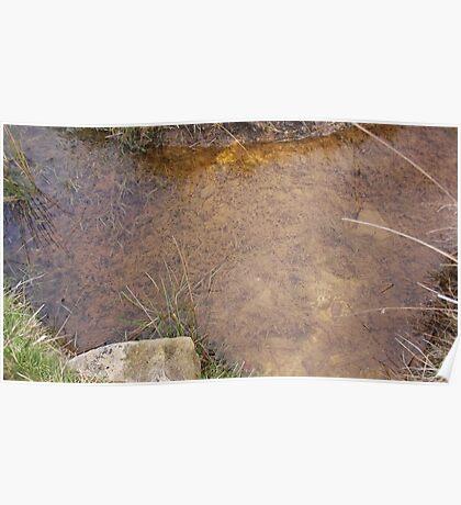 Muddy stream Poster