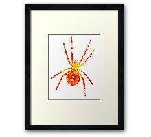 Arachnophilia-Orange/Red Framed Print