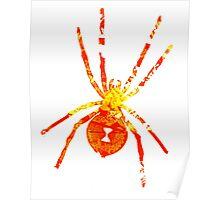 Arachnophilia-Orange/Red Poster