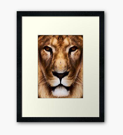Animal King Framed Print
