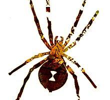 Arachnophilia-Dark by TheFuzzyPepe